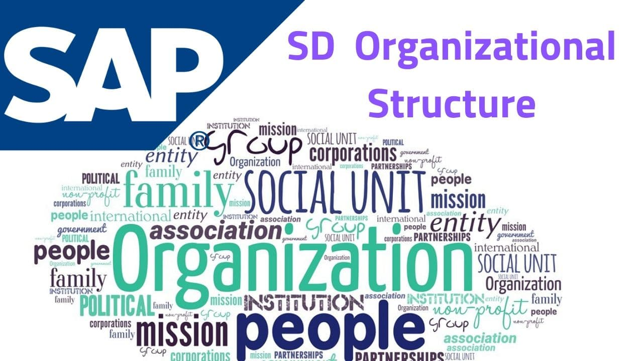SD Organizational Structure