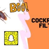 Cockroach filter for Snapchat
