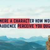 If you were a character how would the audience perceive you quiz
